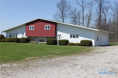 11236 State Route 613, Ottawa, OH 45875 - #: 6024411