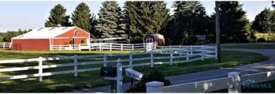 13578 Klopfenstein Road, Bowling Green, OH 43402 - #: 6049300
