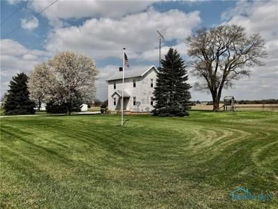 16355 Township Hwy. 96, Upper Sandusky, OH 43351 - #: 6050209