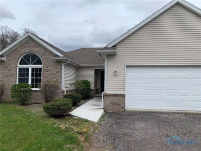 8565 Henry Lucas Road, Liberty Center, OH 43532 - #: 6053275