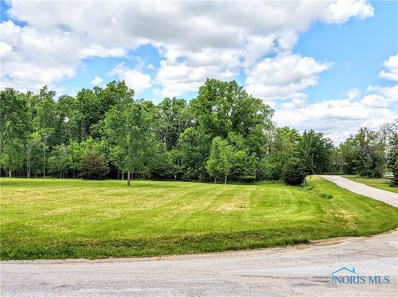 18777 County Road 111 CountyRoad, Defiance, OH 43512 - #: 6054684