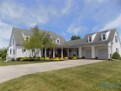 16728 County Road M2, Napoleon, OH 43545 - #: 6055145