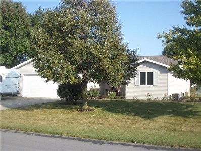 6589 Beaver Creek Drive, Celina, OH 45822 - #: 431353