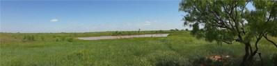 County Rd 233 Road, Grandfield, OK 73546 - #: 910539