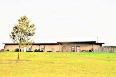 11767 N 2240 Road, Cordell, OK 73632 - #: 930366