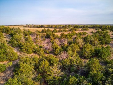 1710 Road, Sweetwater, OK 73666 - #: 930727