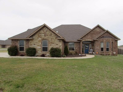 13920 Tag Office Rd, Elgin, OK 73547 - #: 153234