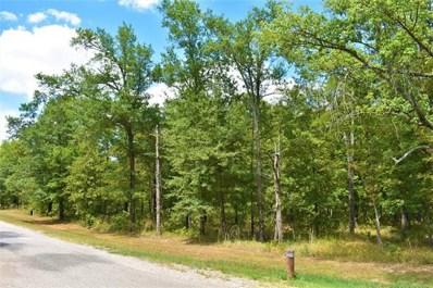 6 Lakeside Ridge Road, Sawyer, OK 74756 - #: 1902526