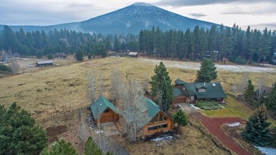 13627 SW Meadow View Drive, Camp Sherman, OR 97730 - #: 220112574