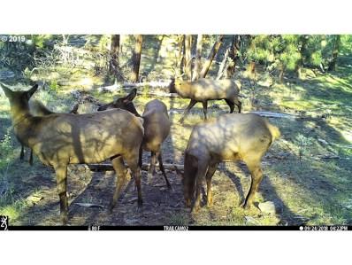 200 Wolf Creek, Paulina, OR 97751 - #: 17603304