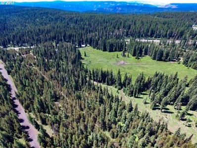 4 Lost Springs Ln, Athena, OR 97813 - #: 19202899