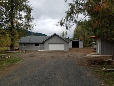1311 Trout Creek Rd, Carson, WA 98610 - #: 19586030
