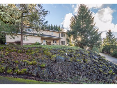 215 Gray Squirrel Ct, Winchester, OR 97495 - #: 19681242