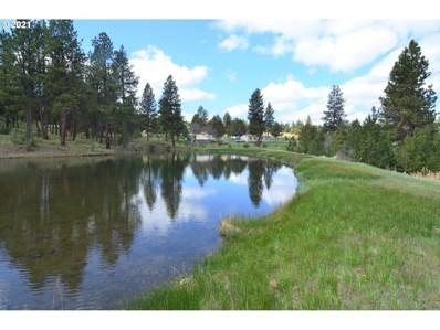 55210 Paul Creek Ln, Long Creek, OR 97856 - #: 21195795
