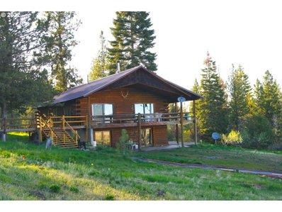 55308 Paul Creek Ln, Long Creek, OR 97856 - #: 21283523