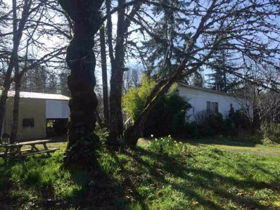 20456 Ferry Rd, Stayton, OR 97383 - #: 772295