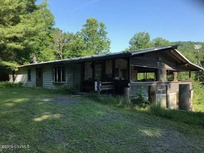 1318 Green Valley Road, Hughesville, PA 17737 - #: 20-74757