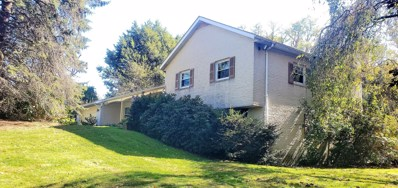 1830 W Holly Street, Coal Township, PA 17866 - #: 20-80171
