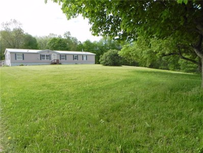 19945 Bockman Hollow Road, Saegertown, PA 16433 - #: 139858