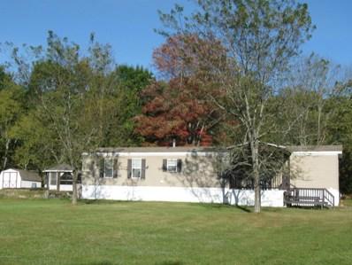 347 Riverview Drive, Susquehanna, PA 18847 - #: 17-5380