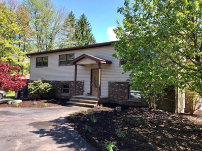 1206 Route 307, Roaring Brook Twp, PA 18444 - #: 18-2262