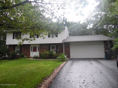 711 Deer Rack Drive, Mountain Top, PA 18707 - #: 18-4010