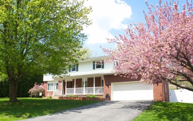 903 Aspen Drive, Mountain Top, PA 18707 - #: 19-1192
