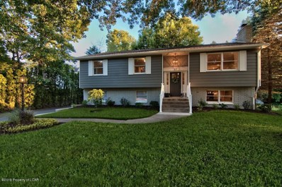 57 E Saylor Avenue, Plains, PA 18702 - #: 19-3295