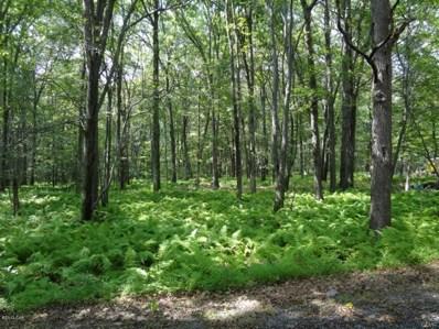 White Birch Road, Towamensing Township, PA 18235 - #: 529946