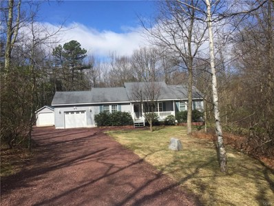 277 Mountain View Drive, Penn Forest Township, PA 18229 - #: 578431
