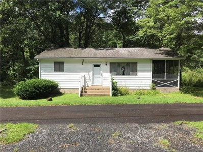 307 Louis Lane, Eldred Twp, PA 18058 - #: 586473