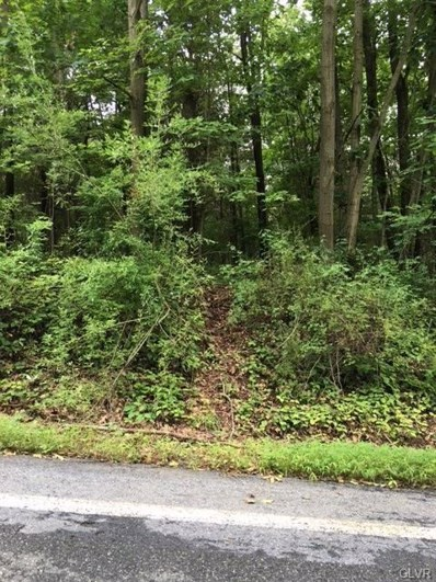 5 Hill Road, Hereford Township, PA 18070 - #: 586739