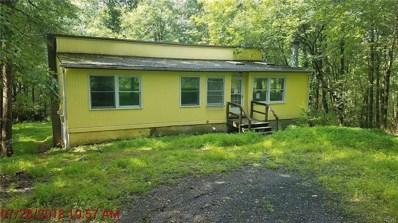 68 Yellow Run Road, Penn Forest Township, PA 18229 - #: 587028