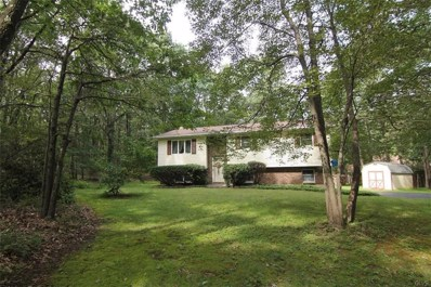 507 Adie Drive, Chestnuthill Twp, PA 18330 - #: 587976