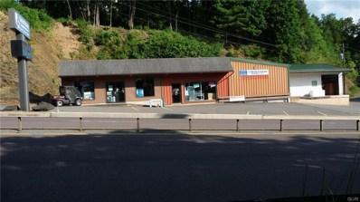 205 Interchange Road, Franklin Township, PA 18235 - #: 589820