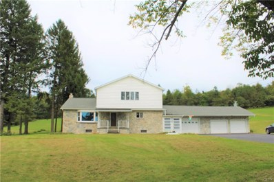 1510 Indian Hill Road, Franklin Township, PA 18235 - #: 591133
