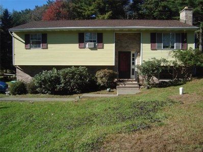 123 Doll Road, Stroudsburg, PA 18360 - #: 595239