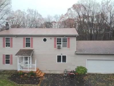 320 Wild Creek Drive, Penn Forest Township, PA 18229 - #: 595883