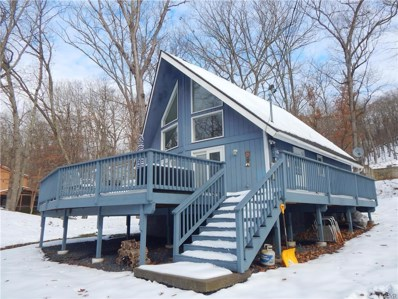 298 Manchester Drive, Pike County, PA 18324 - #: 596664