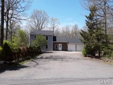 110 Broad Mountain View Drive, Penn Forest Township, PA 18229 - #: 597784