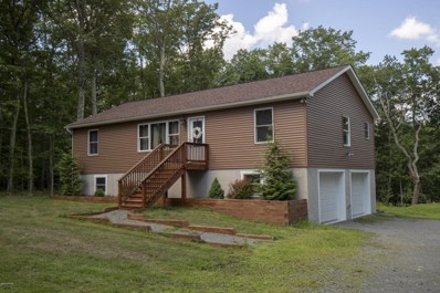 102 Deer Park Ln, Hawley, PA 18428 - #: 18-1620