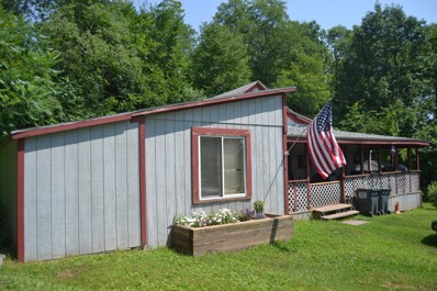 400 Carroll St, Honesdale, PA 18431 - #: 18-3292