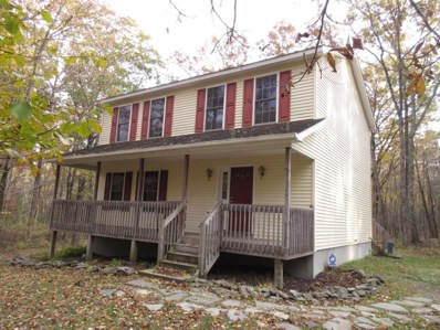 104 Fern Ln, Dingmans Ferry, PA 18328 - #: 18-4865