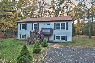 111 Doolan Rd, Dingmans Ferry, PA 18328 - #: 18-4895