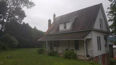 12 Elizabeth St, Hawley, PA 18428 - #: 19-3469