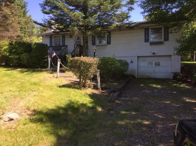 548 Mountain Rd, Albrightsville, PA 18210 - #: PM-55061