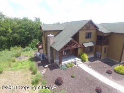 68 Woodsbluff Ct, Lake Harmony, PA 18624 - #: PM-56629