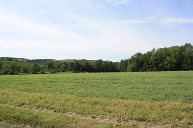 Lot 2 Thornbottom Road, Middlebury Center, PA 16935 - #: WB-81573