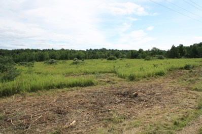 Lot 4 Thornbottom Road, Middlebury Center, PA 16935 - #: WB-81575