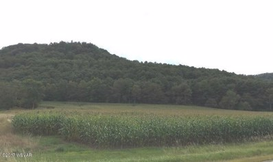 N 44 Route, Shinglehouse, PA 16748 - #: WB-82503
